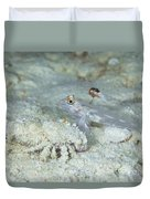 Goby With A Hermit Crab, Australia Duvet Cover
