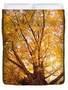 Golden Autumn View Duvet Cover