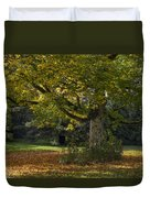 Golden Cappadocian Maple. Duvet Cover
