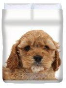 Golden Cockerpoo Puppy Duvet Cover