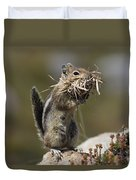 Golden-mantled Ground Squirrel Duvet Cover