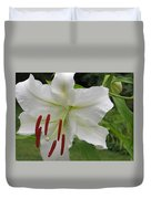 Golden Rayed  Lily Duvet Cover