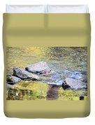 Goldwater Duvet Cover