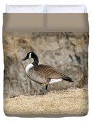 Goose Standing Still Duvet Cover