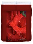 Gorgeous Glads Duvet Cover by Susan Herber