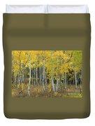 Grand Teton Aspens Duvet Cover