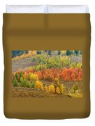 Grand Teton Fall Color Duvet Cover