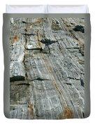 Granite With Quartz Inclusions Duvet Cover