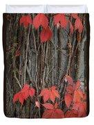 Grape Leaves On Column Duvet Cover
