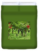 Grape Vines And Roses I Duvet Cover