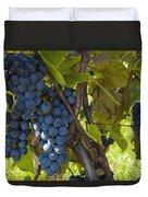 Grapes On A Vine Sutton Junction Quebec Duvet Cover