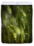 Grass Stems And Seed No.2129 Duvet Cover