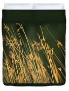 Grasses Duvet Cover