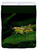 Grasshopper 1 Duvet Cover