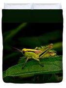 Grasshopper 2 Duvet Cover