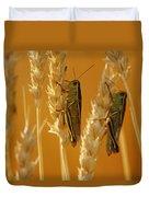 Grasshoppers On Wheat, Treherne Duvet Cover