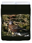 Gray-crowned Rosy Finch Duvet Cover