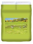 Grazing Sheep On Farm In Autumn Maine Duvet Cover