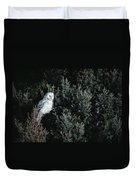 Great Gray Owl Strix Nebulosa In Blonde Duvet Cover