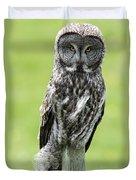 Great Grey Owl, Water Valley, Alberta Duvet Cover