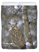 Great Horned Owl In Its Pale Form Duvet Cover by Tim Fitzharris