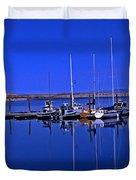 Great Salt Lake Antelope Island Marina Duvet Cover