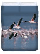 Greater Flamingos In Flight Over Lake Duvet Cover