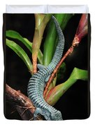 Green Arboreal Alligator Lizard Abronia Duvet Cover