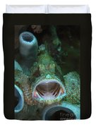 Green Grouper With Open Mouth, North Duvet Cover by Mathieu Meur