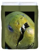 Green Moray Eel Close-up On Caribbean Duvet Cover