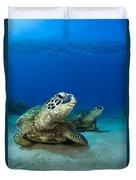 Green Sea Turtle Couple Duvet Cover