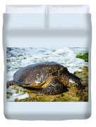 Green Sea Turtle Of Hawaii Duvet Cover