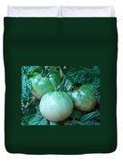 Green Tomatoes On The Vine Duvet Cover