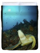 Green Turtle On Reef, Manado, North Duvet Cover