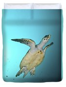 Green Turtle Swimming, Sabah, Malaysia Duvet Cover