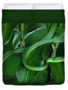 Green Vine Snake Oxybelis Fulgidus Duvet Cover