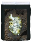 Green, White And Brown Flatworm, Bali Duvet Cover