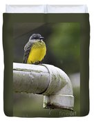 Grey-capped Flycatcher Duvet Cover