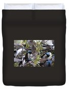 Grey Feathers - Tree Swallow Duvet Cover