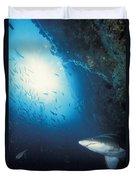 Grey Nurse Shark Turning Away From Reef Duvet Cover