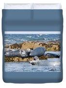 Grey Seals Duvet Cover