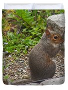 Grey Squirrel Duvet Cover