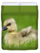 Greylag Goose Gosling Duvet Cover