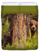 Grizzly Bear Cub Up A Tree, Yukon Duvet Cover