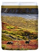 Grizzly Bears And Fall Colours, Denali Duvet Cover