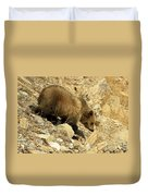 Grizzly On The Rocks Duvet Cover