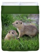 Ground Squirrels, Oak Hammock Marsh Duvet Cover