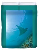Group Of Manta Rays In Blue Water Duvet Cover