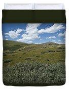 Guanella Pass Slopes Duvet Cover by Michael Kirsh