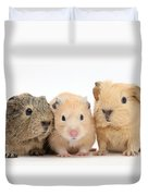 Guinea Pigs And Hamster Duvet Cover